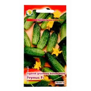 Ogórek Prymus 5g gruntowy konserwowy