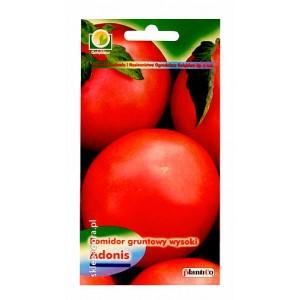 Pomidor Adonis 10g gruntowy wysoki