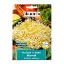Nasiona na kiełki Brokuł 10g