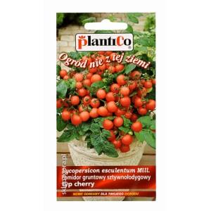 Pomidor Gartenperle 0,2g gruntowy sztywnołodygowy typ cherry