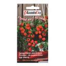 Pomidor Balkonzauber 0,2g-do pojemników typ cherry
