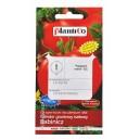 Pomidor Babinicz 10g gruntowy karłowy