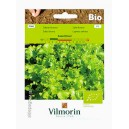 Sałata liściowa Salad Bowl BiO 0,5g Vilmorin