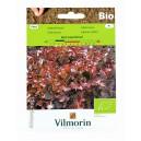 Sałata liściowa Red Salad Bowl BiO 0,5g Vilmorin