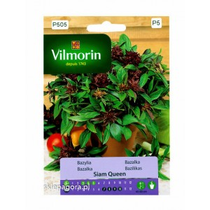 Bazylia Siam Queen 0,5g Vilmorin