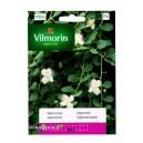 Kapar ciernisty 0,5g Vilmorin