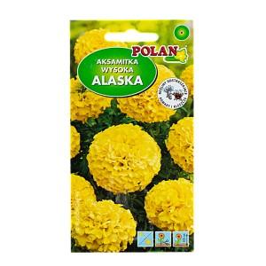 Aksamitka wysoka Alaska 2g Polan