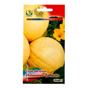Dynia olbrzymia Melonowa Żółta 5g